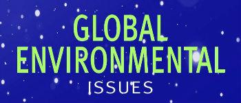 International Journal of Global Environmental Issues